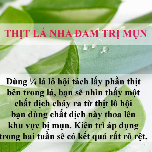tri-sach-mun-bang-la-cay