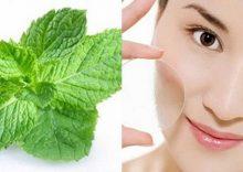 Chăm sóc da mụn hiệu quả từ lá bạc hà